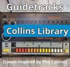 BACKING BEATS (Collins Library)